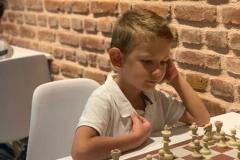 anadolu-senligi-satranc-turnuvasi-1